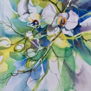 Kathleen Conover transparent watercolor orchids